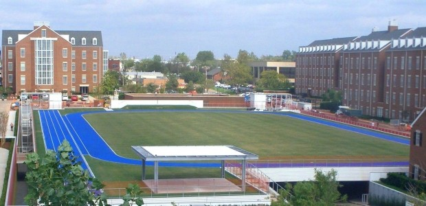 green roof sports field