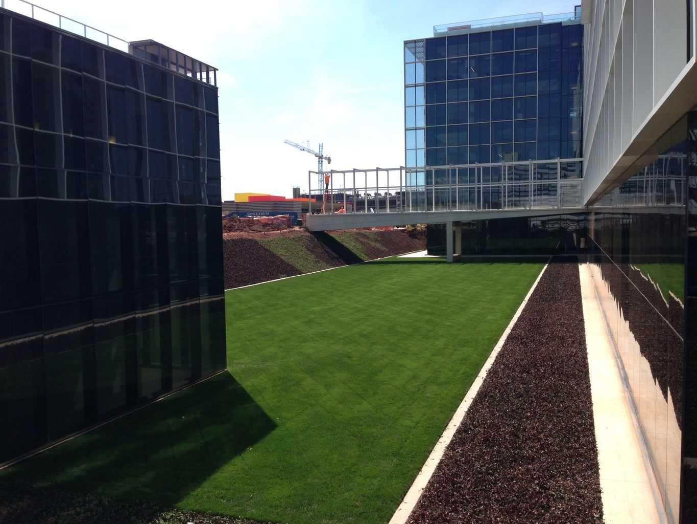 Green Roof Drainage, Natural Grass Drainage, USGA Drainage