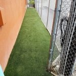 Dog kennels, Animal relief areas, Service Animal Relief Areas, pet relief area, airport pet relief areas, Artificial grass, synthetic grass, fake grass, canine drainage, K9 drainage, doggy daycare, doggy day care, doggy grass, doggie grass, doggie daycare, doggie day care, outdoor carpet, k9 grass, canine grass, K9 turf, canine turf, potty patch, faux grass, artificial lawn, synthetic lawn, fake lawn, k9, k9 drainage, synthetic turf, artificial turf, dog run, kennel drainage, kennels, Artificial grass, synthetic grass, doggy day care, canine grass, porch potty, canine turf, potty patch, faux grass, artificial lawn, synthetic lawn, K9 grass, K9 turf, pet play area, airgrid, air grid, kennel, outdoor dog kennel, k9 kennels,
