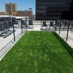 green roof, Animal relief areas, Service Animal Relief Areas, pet relief area, airport pet relief areas, Artificial grass, synthetic grass, fake grass